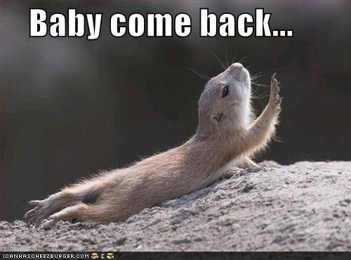Image result for baby come back meme