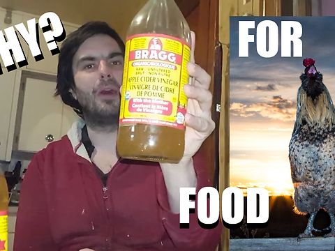 This is a question I still get asked a lot from my fermentation video, so we show you why you need apple cider vinegar when fermenting grains for your poultry with a visual example. Along with this, we discuss what any benefits are of using this over dry feed when it comes to raising your animals.