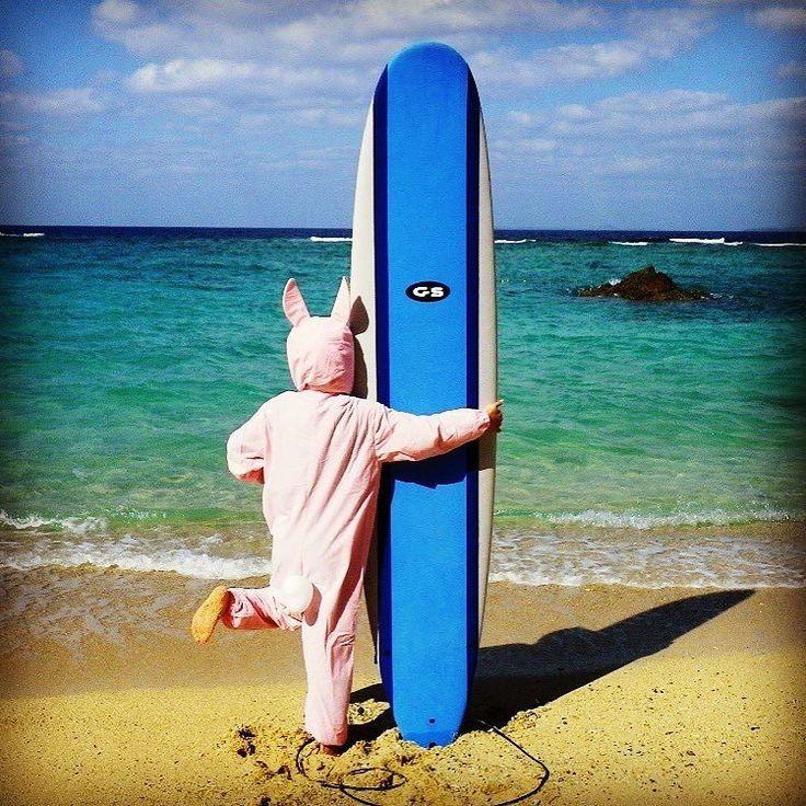 さあ波乗りいくピョン #沖繩 #サーフィン #体験レッスン #ロングボード #恩納村 #波ウェーブ #ウサギ #海 #波乗リ #透明度 #沖繩旅行 #サーフィンデビュー #オキナワ #卒業旅行 #kirei #okinawa #surfing #waves #visitokinawa #okinawatour #rabbit #longboarder #instagood #