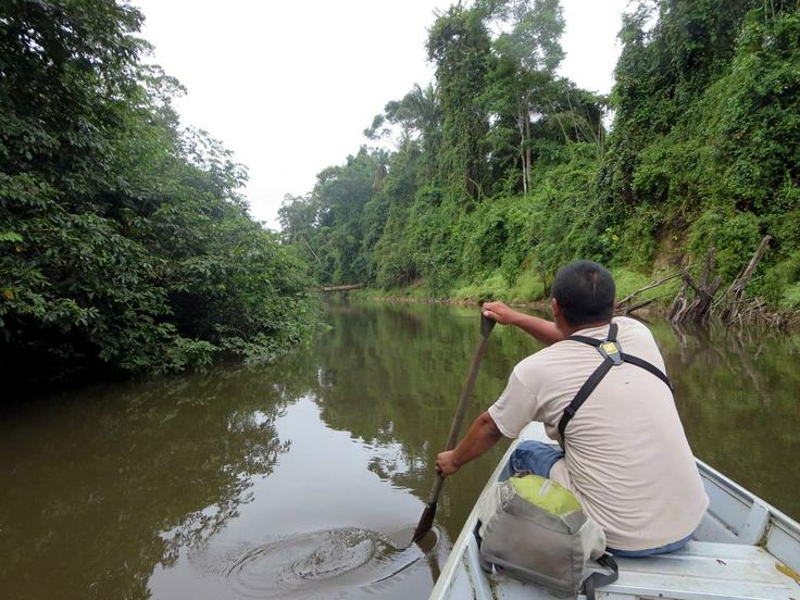 An Amerindian guide paddles his canoe up the Burro Burro River near Surama Eco-Lodge, North Rupununi, Guyana.
