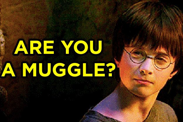 I got 0% Muggle! What % Muggle Are You?