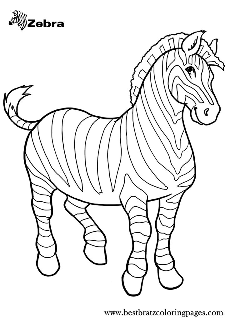 zoo animals coloring pages zebra - photo#3