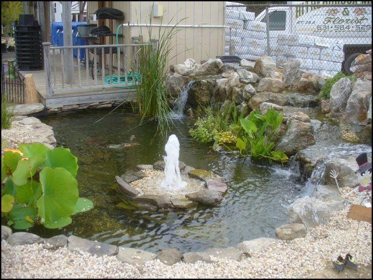 A diy complete low maintenance koi pond koi pond for Backyard pond maintenance