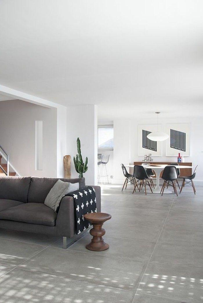 1 amenager salon salle a manger sol en dalles gris canape gris fonce cactus