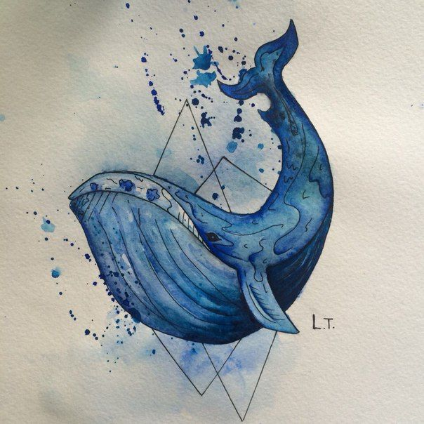 тату синий кит эскиз - Поиск в Google