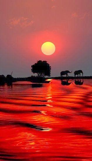Africa Sunset..So beautiful                                                                                                                                                      Mais