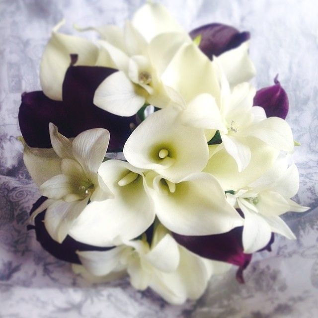 And for the bridesmaids, cream callas and dendrobium orchids with a few eggplant callas :) #purpleandcreambouquets #weddingbouquets #realtouchbouquets