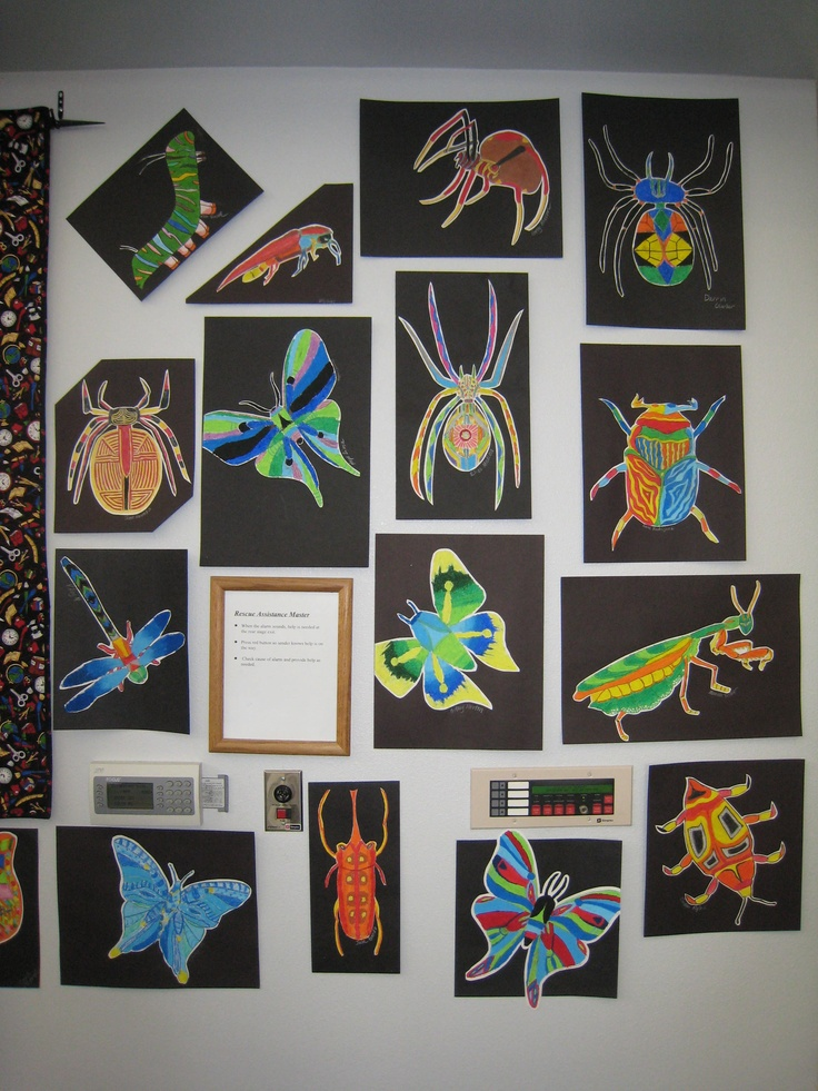 More oil pastel bugs by my 7th and 8th graders.