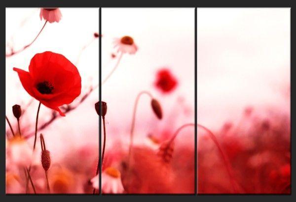 tableau triptyque coquelicots romantiques tableau pinterest toile photos et rouge. Black Bedroom Furniture Sets. Home Design Ideas