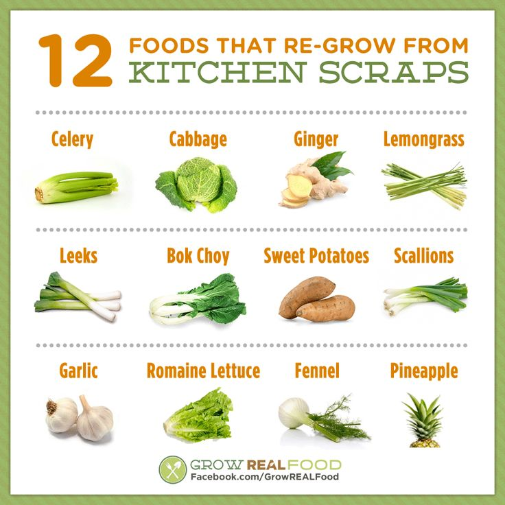 Foods You Can Grow From Kitchen Scraps: 97 Best Regrow Veggies!! Images On Pinterest