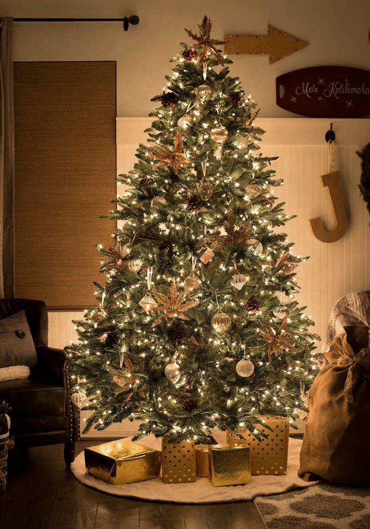 BH Noble Fir all sparkly and shimmery at night