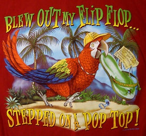 """Blew out my flip flop, stepped on a pop top..."" ~ Margaritaville by Jimmy Buffet"