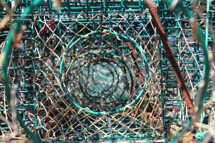 Trapped. Loved the look of all the lobster traps since they are not a common place in Niagara. @ThiessenCards Creativecardsandphotography@yahoo.ca