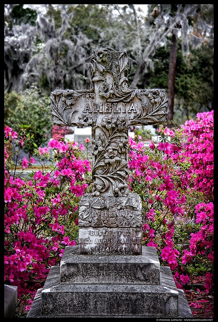 Bonaventure Cemetery, Savannah by Michael LaPalme, via Flickr
