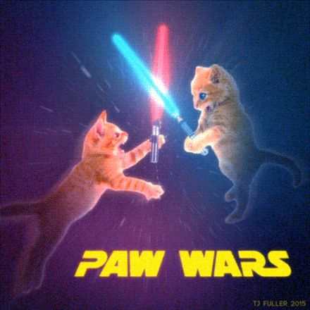 Kitty Star Wars ! May the the pounce be with you