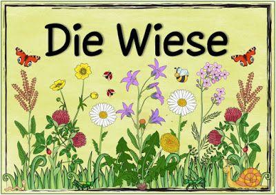 "Ideenreise: Themenplakat ""Die Wiese"""