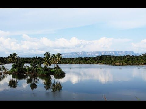 GUINEA-Forécariah