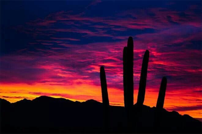 Marana,  Arizona sunset.