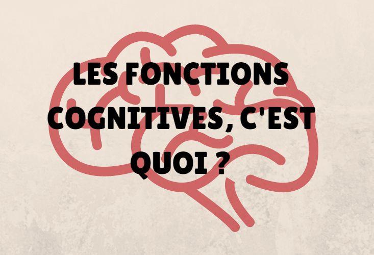 """On lit de plus en plus le terme de """"fonctions cognitives"""" grâce aux avancées des neurosciences. De quoi parle-t-on quand on parle de fonctions cognitives"""