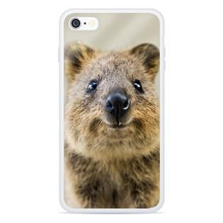 """""""Turns out these cute Quokkas take better selfies than anyone at Shelfies ever could!"""""""