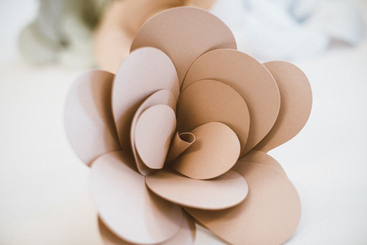 Paper rose made by Edinas paper everydays