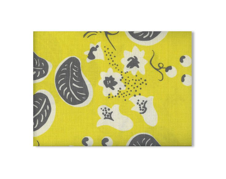 Grapes | Yellow Duncan Grant