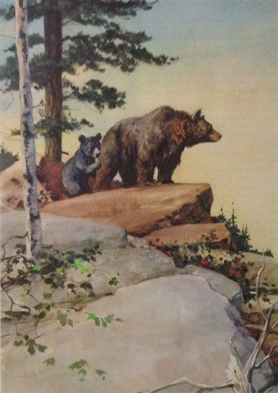 Bears print Vintage 1960s book illustration. by accoladefive