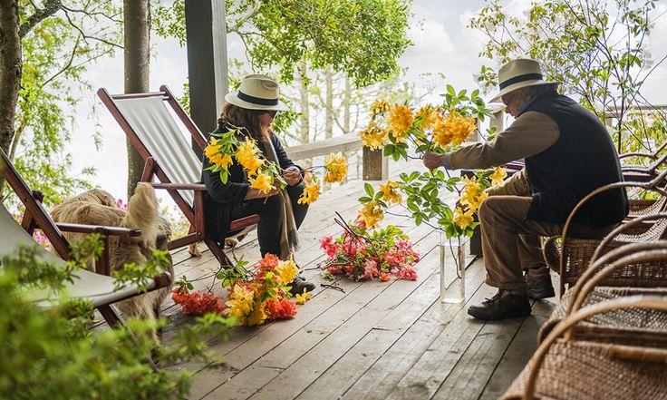 flores casa ranco federico elton revista ed