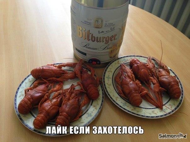 Раки с пивом 👍😋