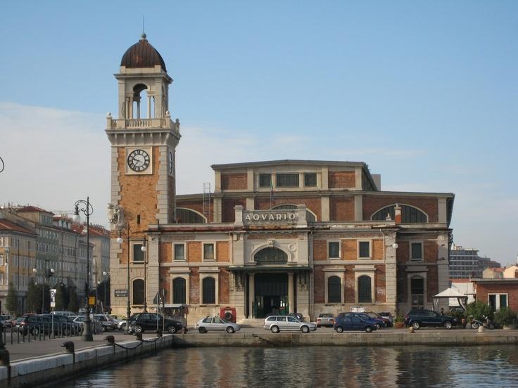 l'acquario di Trieste (Santa Maria del Guato)