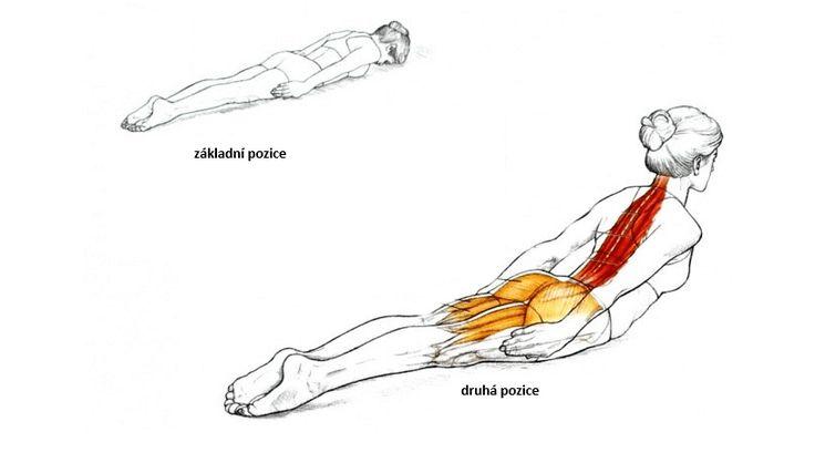 Dejte se do základní polohy. Lehněte si na břicho, čelem na podložku. Dejte si ruce rovnoběžně, a dlaně zatlačte proti svým stehnům. Narovnejte lokty. Dejte si nohy k sobě, a jemně natáhněte prsty. Vydechněte. Zvedněte hlavu, hrudník a horní část břicha a zároveň držte ruce a nohy na místě. Nadechněte se. Pomalu se vraťte do …