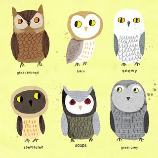 various owls from Cally Jane Studio