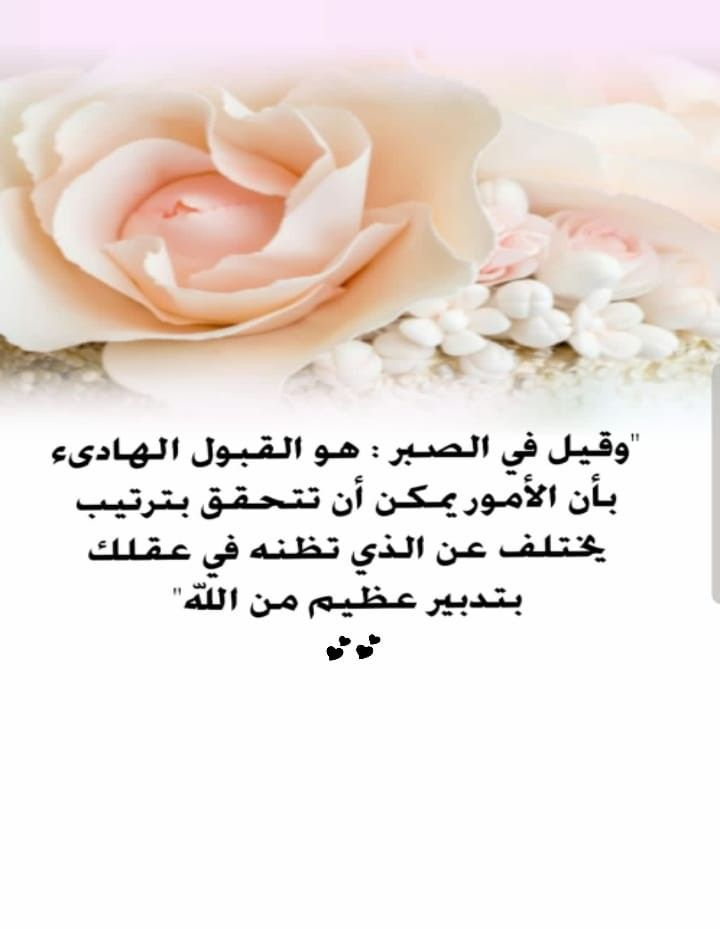 Pin By Eman Duniya On حدثوني عن الجنة Plants Flowers Rose