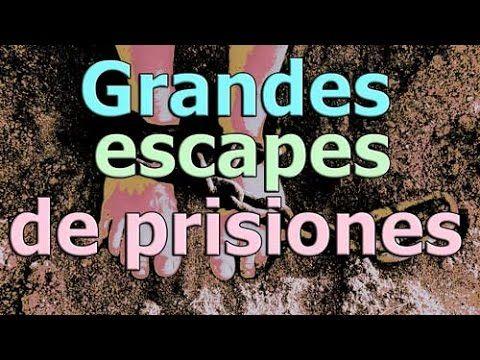 espectaculares escapes de prisiones de toda la historia. https://www.youtube.com/c/5topinfo SUSCRIBETE EN GOOGLE+: http://goo.gl/5uDqDC SUSCRIBETE EN TWITTER : https://twitter.com/5topinfo LIKE EN FACEBOOK : https://www.facebook.com/5topinfo PAGINA WEB : http://5top.info