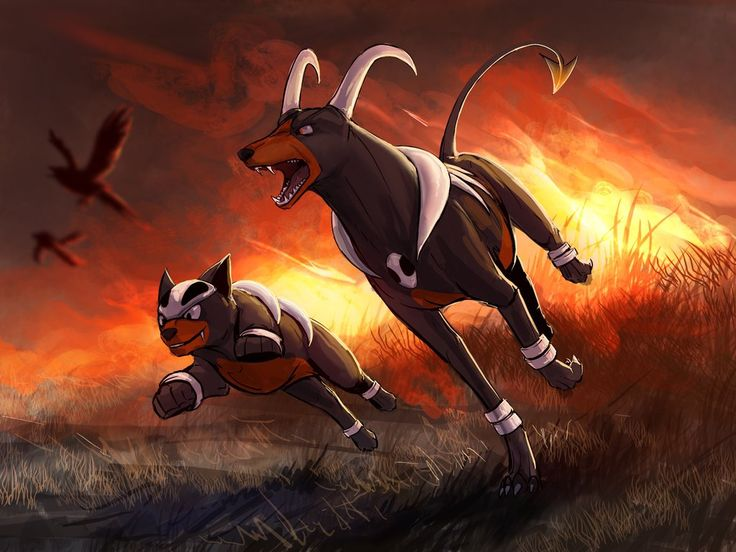 Blazing trouble makers by Tapwing on DeviantArt Houndoom