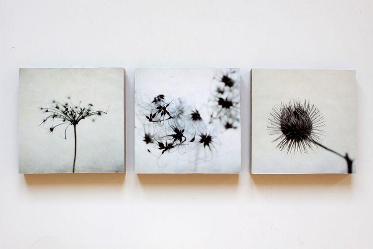 """Schattenblumen Trio"""" auf Holz 12x12 von fotomädchen auf DaWanda.com"""