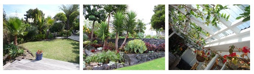 #Plants   Various selection of plant types, sizes and colour, that is best suited for your specific #gardenplan.