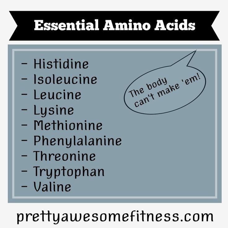best amino acids weight loss