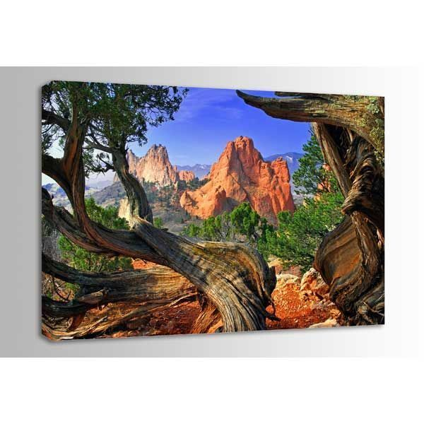 Framed Garden 48x32 *D by Circle Graphics is now available at American Furniture Warehouse. Shop our great selection and save!
