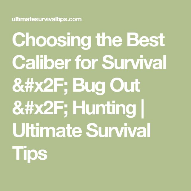 Choosing the Best Caliber for Survival / Bug Out / Hunting   Ultimate Survival Tips