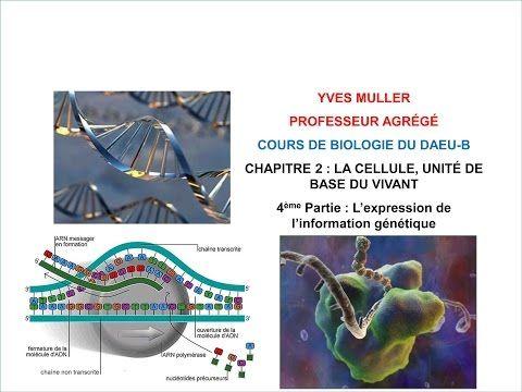 Bio faculté: Biologie cellulaire cours DAEU B - SVT