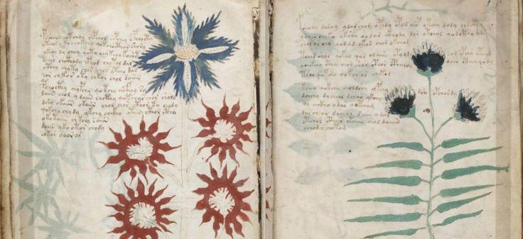 Entre livre de recettes, herbier et versets cryptiques, voilà plusieurs siècles que le manuscrit de Voynich passionne et trouble les grands esprits de ce monde… Arriverez-vous à déchiffrer ses secrets?