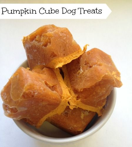 Pumpkin Cube Dog Treats.  http://twolittlecavaliers.com/2014/03/3-easy-dog-treats-can-make.html