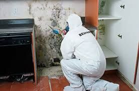 When choosing a mold remediation North Miami Beach Specialist professional, you must be able to trust that he/she truly cares about you and everyone who may have potentially been exposed to toxic mold and will, therefore, be highly knowledgeable, diligent and professional when it comes to removing it. More Details: http://miamimoldspecialist.com