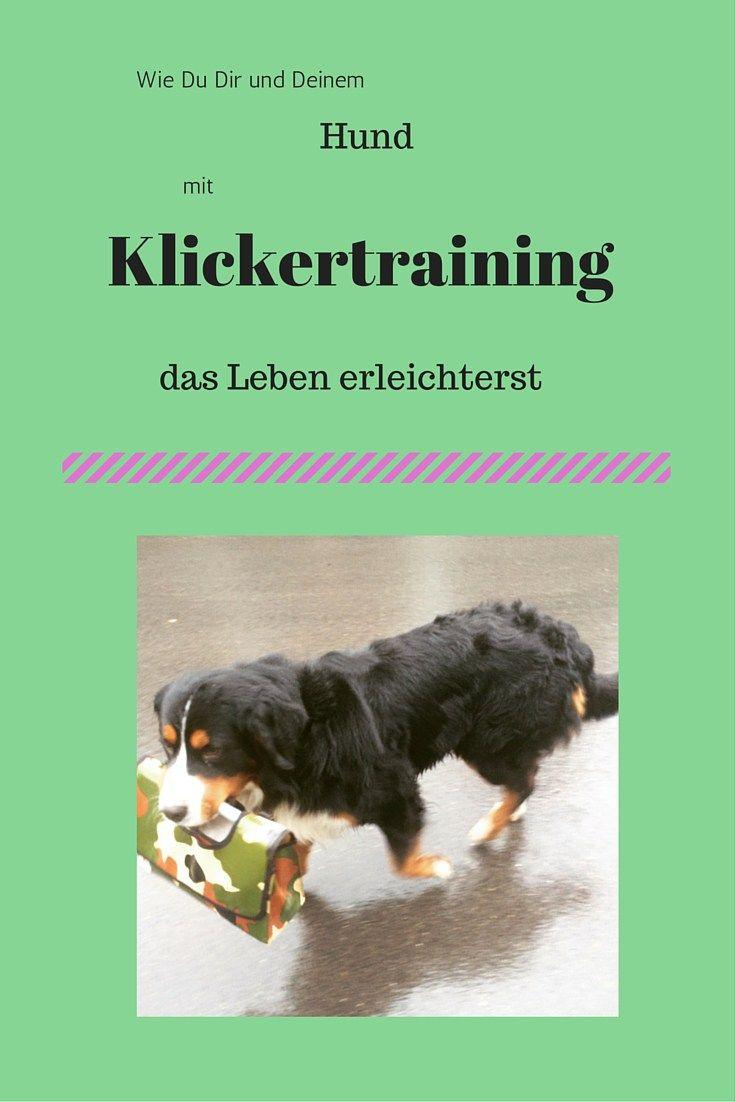 klickertraining