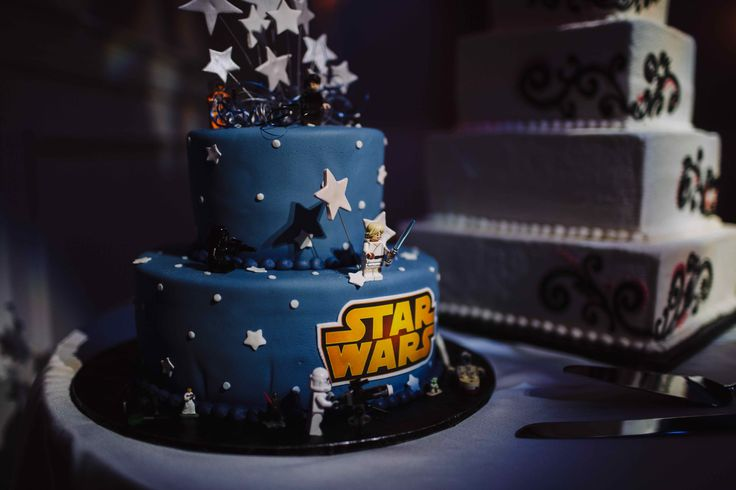 Star Wars Wedding Cake, Bride and Groom Cake, Columbia Station Wedding (credit: With Love & Embers)