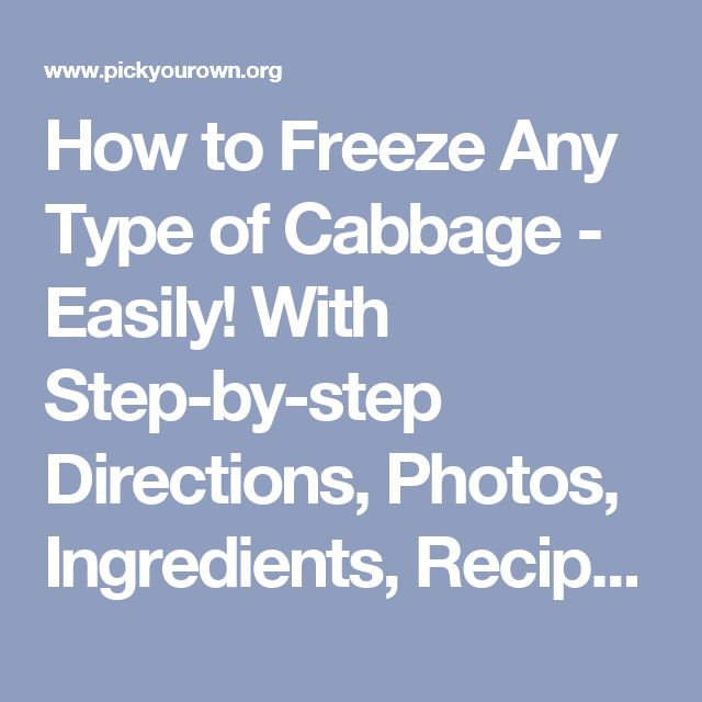 How to Freeze Any Type of Cabbage - Easily! With Step-by-step Directions, Photos, Ingredients, Recipe and Costs
