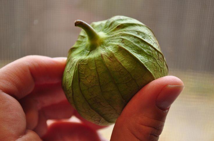 Más de 25 ideas increíbles sobre Chipotle pepper en ...