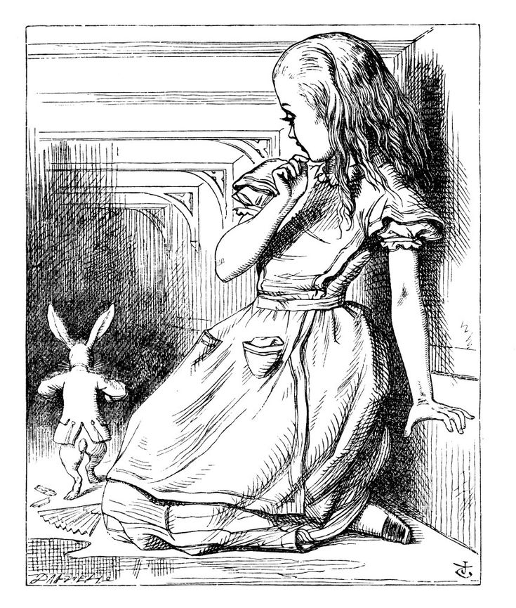 """...before her was another long passage, and the White Rabbit was still in sight, hurrying down it."""