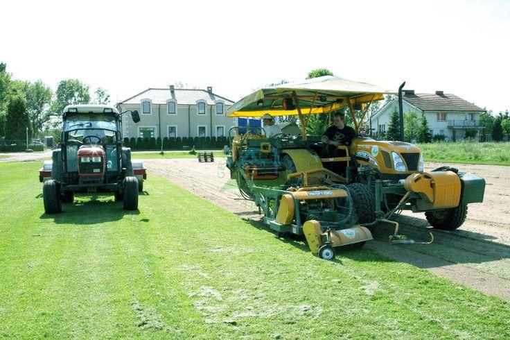 Zapraszamy do zapoznania się z ofertą naszej firmy -> http://www.grasslandfarms.pl/